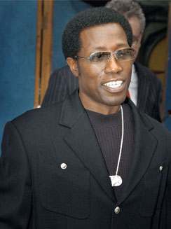 Wesley Snipes dans le rôle de James Brown ?