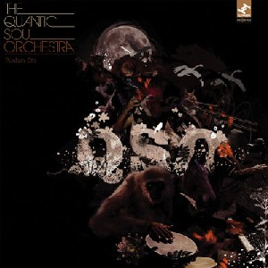 Quantic Soul Orchestra - Pushin' On