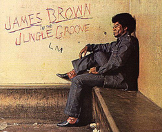 James Brown en petits morceaux