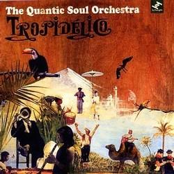 Quantic Soul Orchestra - Tropidelico