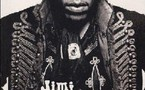 Jimi Hendrix : Mots pour mots - David Stubbs