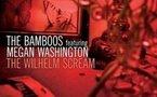 Un deuxième titre du nouvel album des Bamboos en écoute